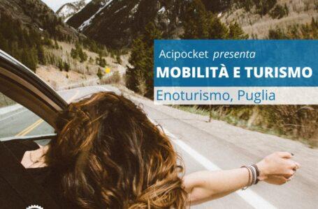 Turismo, ricchezza da bere: l'enoturismo in Puglia